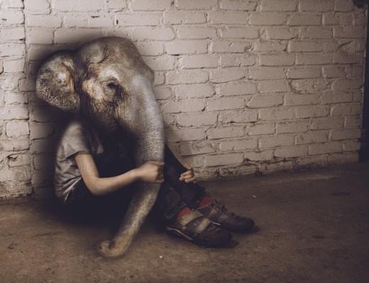 Anti-Zoo-Sad-Elephant-surreal-3