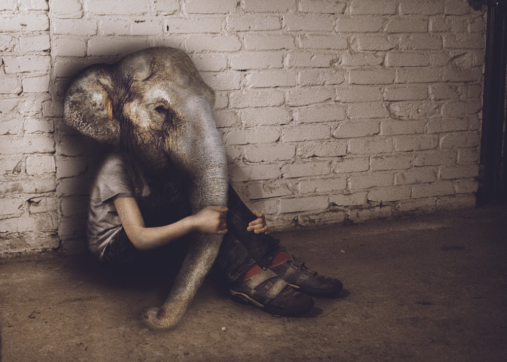 Anti-Zoo-Sad-Elephant-surreal-3