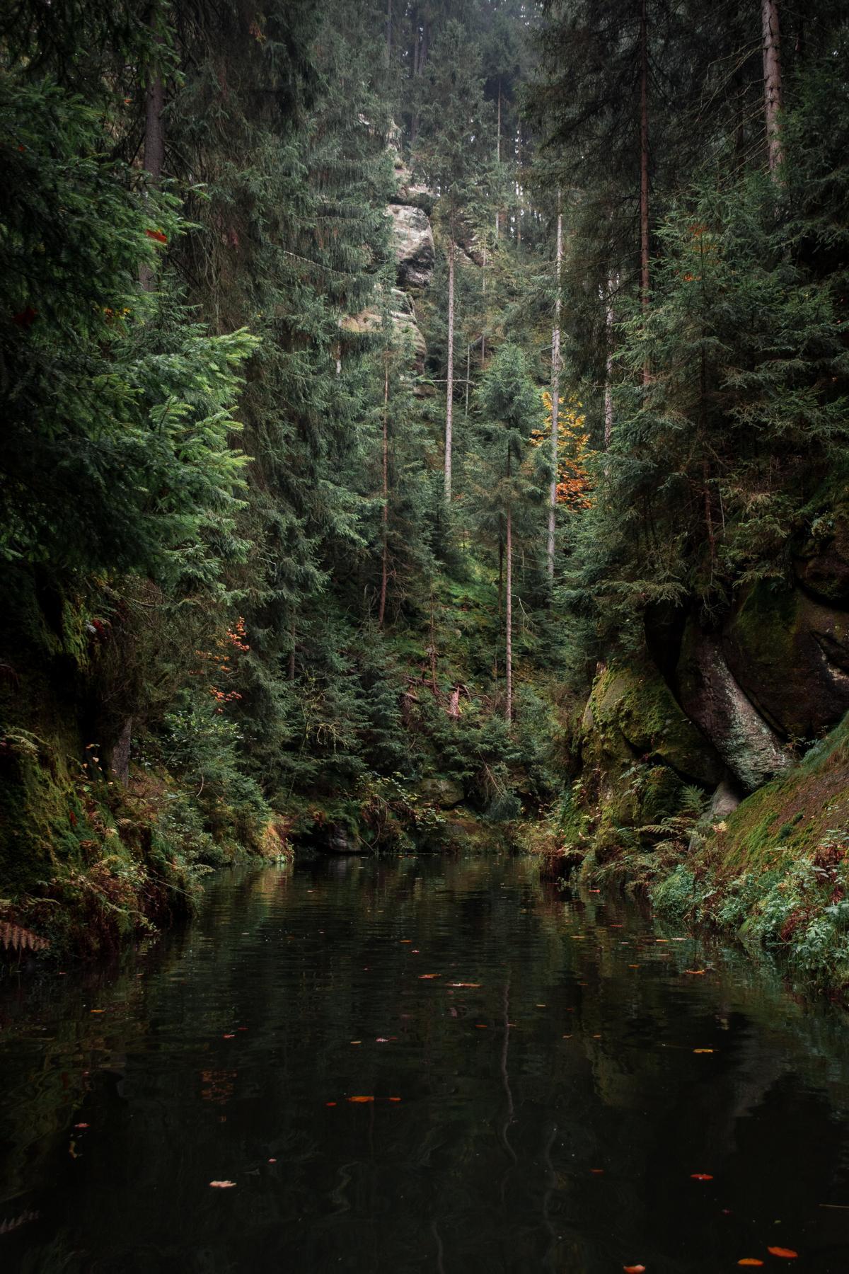 hinterhermsdorf-klamm-saechsische-schweiz-herbst-kahnfahrt
